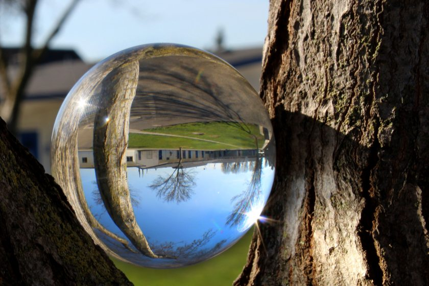 glass-ball-reflection-trees-1995677
